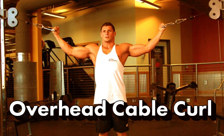 overhead-cable-curl-step-by-step-guide-benefits-muscles-worked-mistakes-beginners-make-variations-and-alternative-exercises