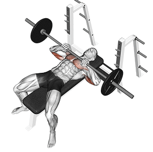 Illustration showing which muscles are worked up during the close grip bench press
