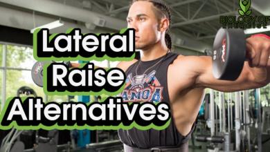 Lateral Raise Alternative