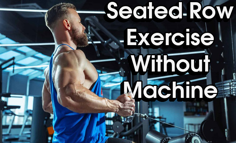 Seated Row Exercise Without Machine
